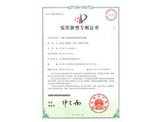 公司专利-1